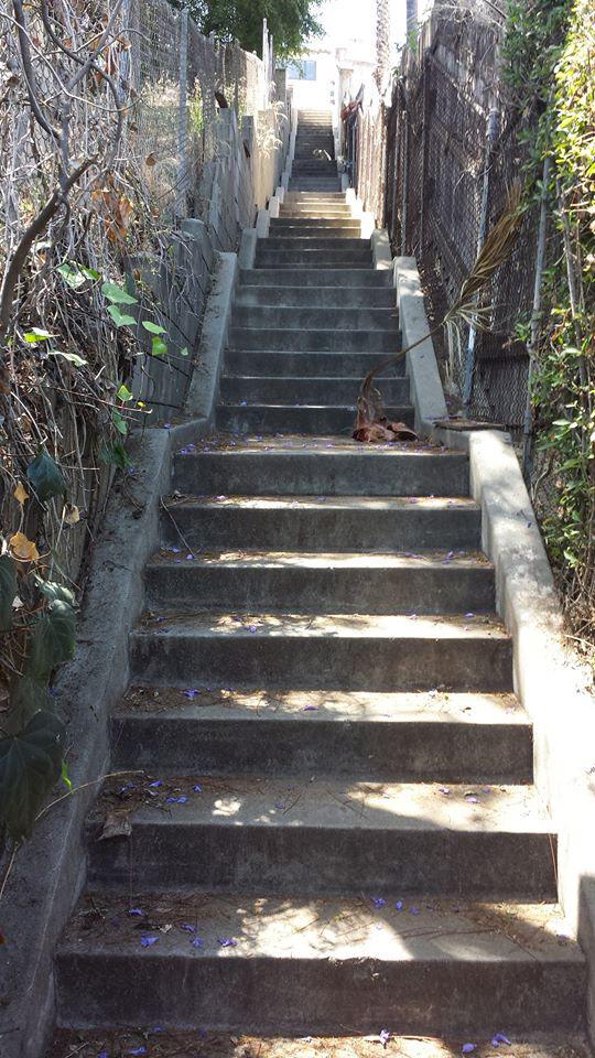 Silver Lake Stair Climb