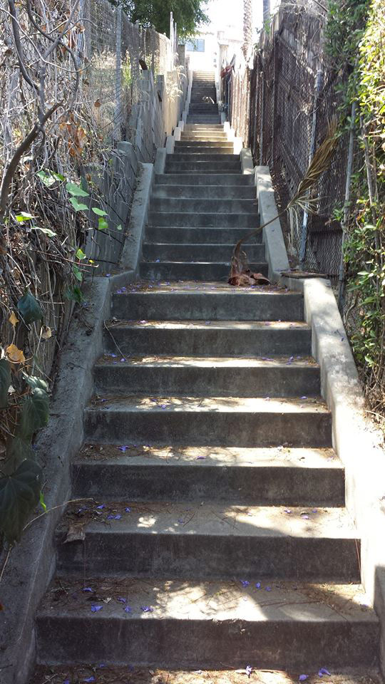 Silver Lake Stair Climb