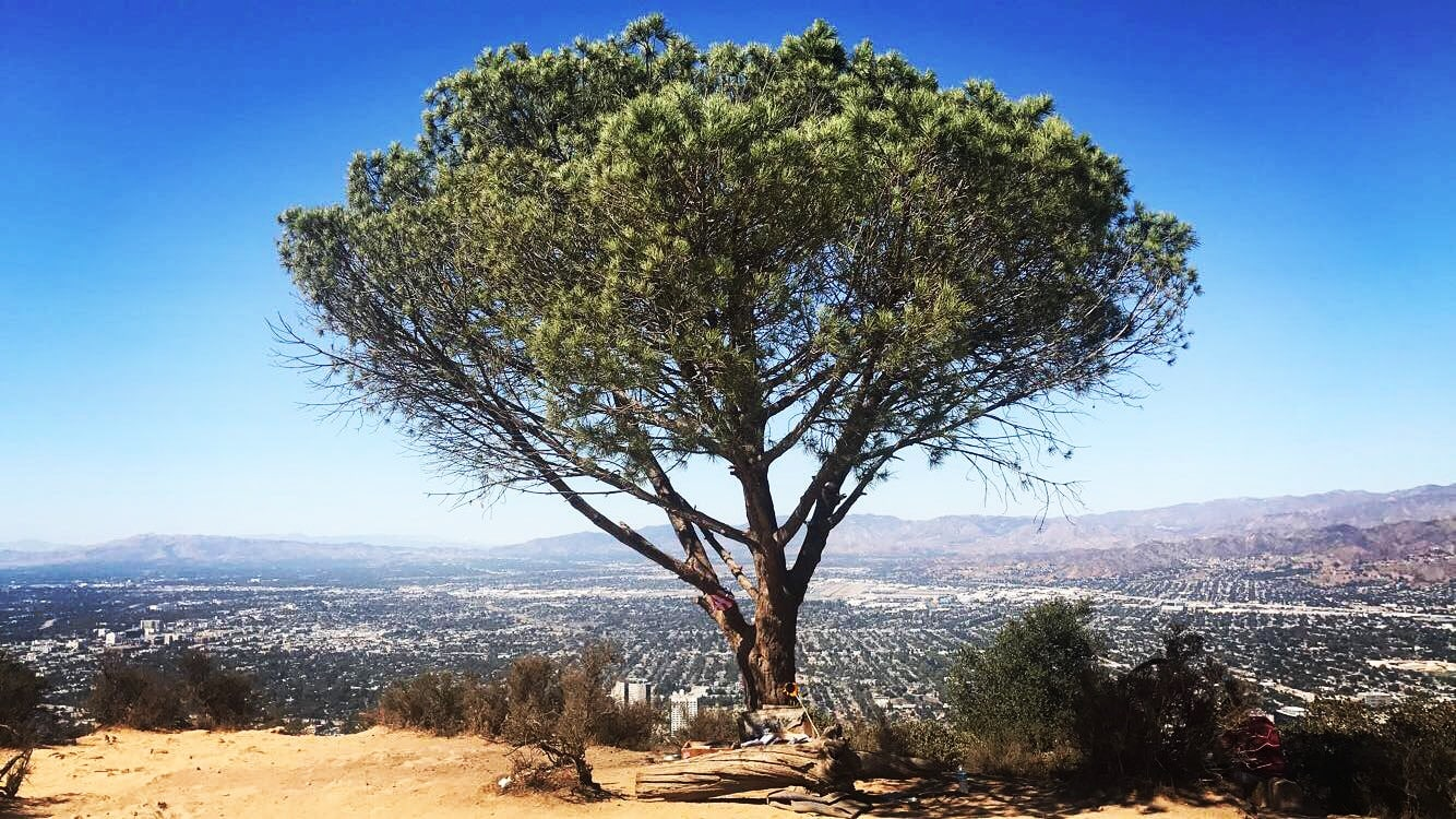 amazing hikes in los angeles